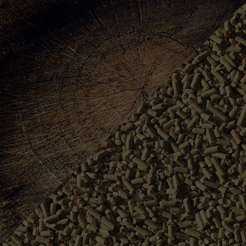 Poele mixte bois pellets Voiron